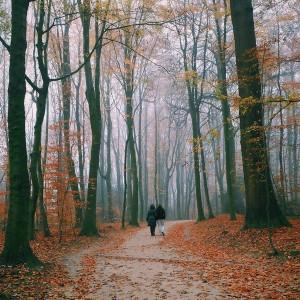 Caminando por la naturaleza-vida-